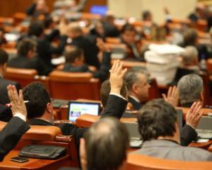 Amnistitia fiscala pentru PFA, PFI si drepturi de autor urmeaza sa fie votat. ANAF anunta verificari in domeniul IT