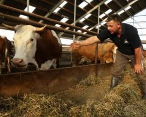 Analiza: cadastrul national poate afecta accesul la finantare al fermierilor romani