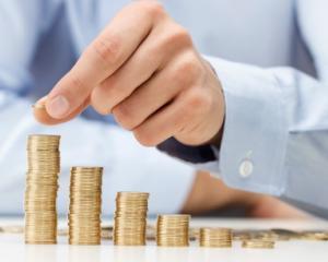 Guvernul ofera PFA-urilor si II-urilor o indemnizatie de 2230 lei/luna