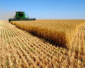 Dacian Ciolos anunta reducerea TVA pentru servicii agricole, seminte, pesticide si ingrasaminte