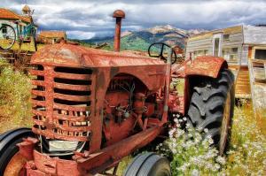 Angajarea zilierilor in agricultura. Ce trebuie sa stie o PFA?